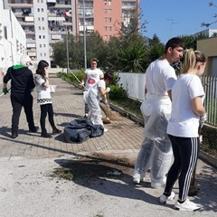 Guerrilla gardening allIISS Volta De Gemmis