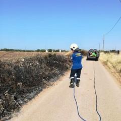 Incendio domato dalle guardie ambientali in via Balice