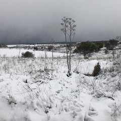 Murgia del Ceraso Campo dei Missili jfif