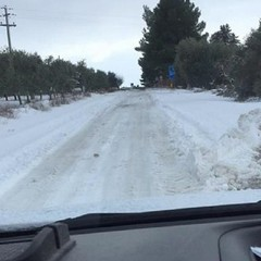 Neve a Palombaio