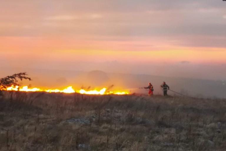 Incendio al Bosco Rogadeo