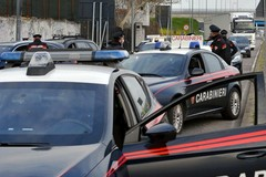 L'assalto e il sequestro: carico di agnelli rapinato fra Bitonto e Palo