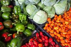 «Un pugliese su due ha ridotto gli sprechi alimentari»