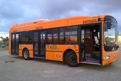 A Natale a Bitonto bus aggiuntivo notturno per le frazioni