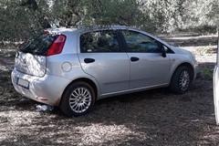 A Bitonto i ladri d'auto non rispettano la quarantena