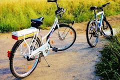 Ladri in bicicletta sorpresi a rubare un quintale di ortaggi a Bitonto