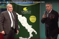 Dalla fusione di CNO e UNASCO nasce Italia Olivicola. Presidente il bitontino Gennaro Sicolo