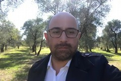 Gelate e xylella, Damascelli (FI) vuole la «verità su decreto fantasma e fondi regionali»