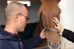 Disabili e ippoterapia: l'affetto dei cavalli sulla strada verso l'indipendenza