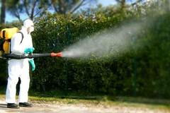 Stanotte a Bitonto la disinfestazione contro zanzare e insetti alati