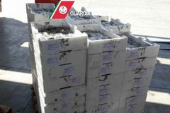 Seppie e granchi sequestrati e devoluti alla Caritas di Bitonto