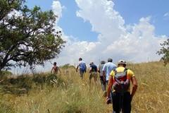 Vacanze alternative? Ecco il campo di volontariato naturalistico sul Parco dell'Alta Murgia