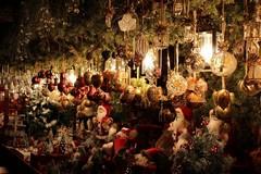 Il Natale di minori, anziani e diversamente abili a Bitonto: ecco tutto il programma