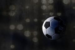 Serie A a dodici squadre, ecco le avversarie del Bitonto
