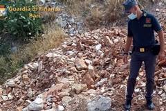 Discarica abusiva nel parco di lama Balice: sanzioni per 3 milioni di euro