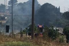 Ancora in fiamme Lama Balice: pompieri in azione su via Palombaio