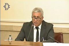 La denuncia di Italia Olivicola sul Consiglio Oleicolo Internazionale: «La Mogherini boicotta l'Italia»