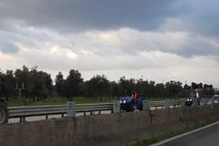 Coldiretti boicotta la protesta dei gilet arancioni a Roma