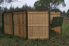 Invasione cinghiali: installati i primi recinti per la cattura