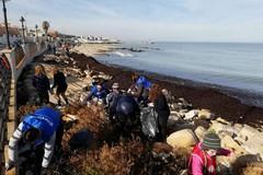 Spiaggia di Palese ripulita da scout, studenti e ambientalisti. Tanti volontari da Bitonto