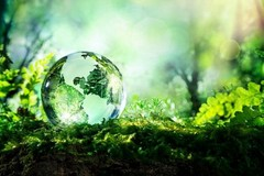"""I ragazzi dell'I.C. """"Sylos"""" di Bitonto premiati al concorso nazionale EcoQuiz"""