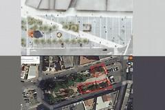 Riqualificazione piazza Caduti: alberi a rischio espianto?