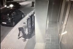 Giovanissimi distruggono le fioriere di un bar di via Matteotti per gioco