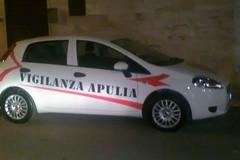 Ladri nelle ville sulla Terlizzi-Mariotto: l'allarme li mette in fuga