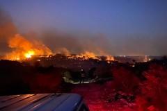 Incendio al Bosco di Bitonto. In fumo 100 ettari in località Rogadeo