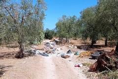 Abbaticchio: «Abbandono rifiuti speciali riconducibile ad organizzazione criminale»