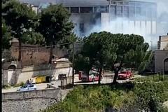 Incendio di sterpaglie nei pressi del Palazzetto di Bitonto