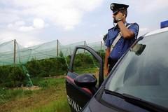 Incidente sulla Terlizzi-Mariotto: ferite in maniera lieve due persone