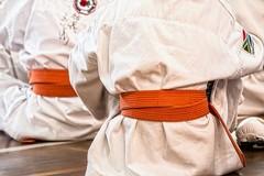 Karate, ai Nazionali Universitari anche Modugno e Tatoli