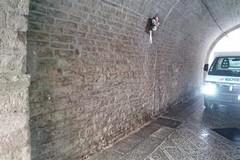 Ripulito dalle scritte spray l'Arco Pinto nel centro storico di Bitonto