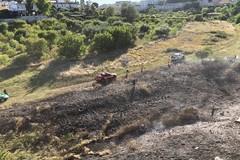 Fiamme in Lama Balice, il sindaco di Bitonto: «Grande rabbia»