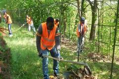 «Per i migranti lavoro in campagna contro la xylella e per la pulizia dei canali»