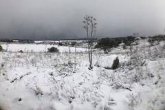 Neve e ghiaccio a Bitonto: uomini e spargisale in azione