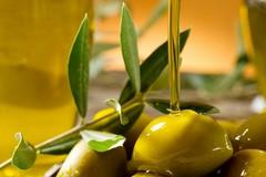 """Domani la cultura dell'olivo e dell'olio protagonista a Molfetta con """"Olea"""""""