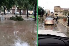 Alberi spezzati da fulmini e vento: chiusa la villa comunale di Bitonto