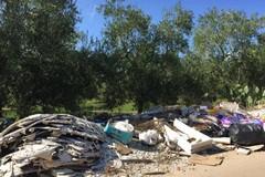 Stanziati 100mila euro per ripulire le campagne di Bitonto dai rifiuti