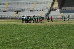 Rugby 2012, domenica a Corato in campo l'under 14