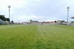 Stadio Bitonto, Natilla attacca Nacci: «Gravi mancanze nell'attività di controllo»