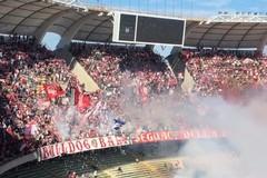 L'USD Bitonto sarà la prima avversaria dell'SSC Bari Calcio di Aurelio De Laurentis