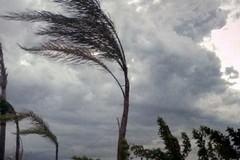 Vento forte, allerta meteo su Bitonto e tutta la Puglia