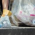 Anche Bitonto partecipa al World Cleanup Day