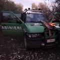 Caccia illegale del cinghiale nel Parco: scattano due denunce