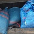 Sventato furto di olive nelle campagne di Bitonto, ladri in fuga