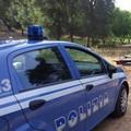 Auto rubate nascoste rinvenute nelle campagne tra Bitonto e Palo del Colle