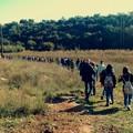Giornata pugliese dell'escursionismo, c'è anche Fare Verde Bitonto
