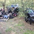 Rubate a Bitonto e trovate a Foggia: decine di auto a Borgo Mezzanone